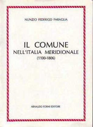 Immagine di Il comune dell'Italia Meridionale (1100-1806). Studio storico