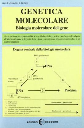 Immagine di GENETICA MOLECOLARE