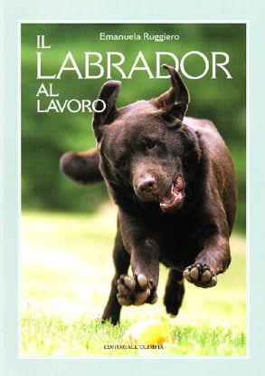 Immagine di LABRADOR AL LAVORO (IL)