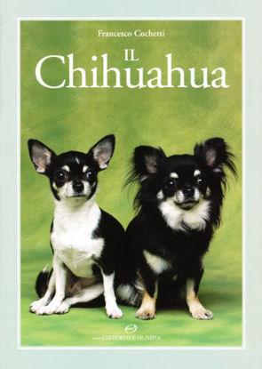 Immagine di CHIHUAHUA (IL)