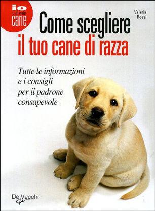 Immagine di SCEGLIERE IL TUO CANE DI RAZZA