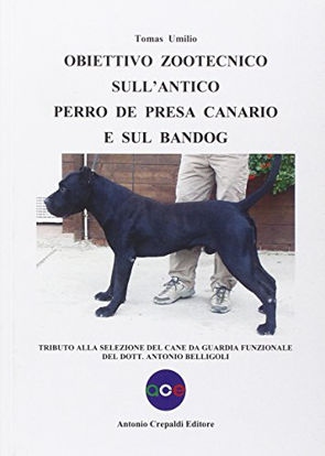 Immagine di OBIETTIVO ZOOTECNICO SULL`ANTICO PERRO DE PRESA CANARIO E SUL BANDOG