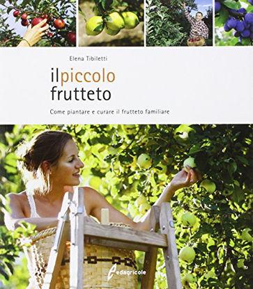 Immagine di PICCOLO FRUTTETO (IL) COME PIANTARE E CURARE IL FRUTTETO FAMILIARE