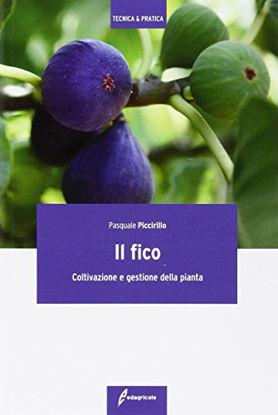 Immagine di FICO (IL). COLTIVAZIONE E GESTIONE DELLA PIANTA