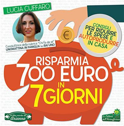 Immagine di RISPARMIA 700 EURO IN 7 GIORNI. PER RIDURRE LE SPESE E AUTOPRODURRE IN CASA