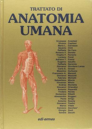 Immagine di ANATOMIA UMANA. TRATTATO VOL. 1-3
