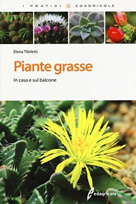 Immagine di PIANTE GRASSE - IN CASA E SUL BALCONE