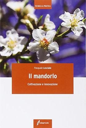 Immagine di MANDORLO (IL) COLTIVAZIONE E INNOVAZIONE