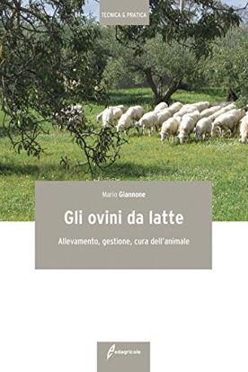 Immagine di OVINI DA LATTE (GLI) ALLEVAMENTO, GESTIONE, CURA DELL`ANIMALE