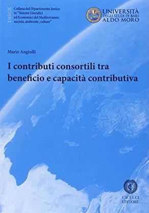 Immagine di CONTRIBUTI CONSORTILI TRA BENEFICIO E CAPACITA` CONTRIBUTIVA (I)