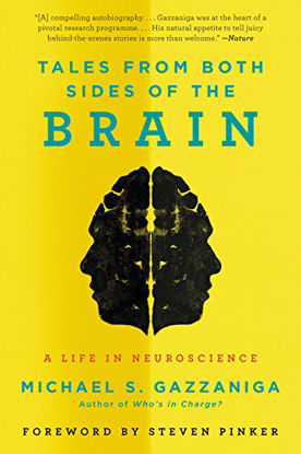 Immagine di TALES FROM BOTH SIDES OF THE BRAIN
