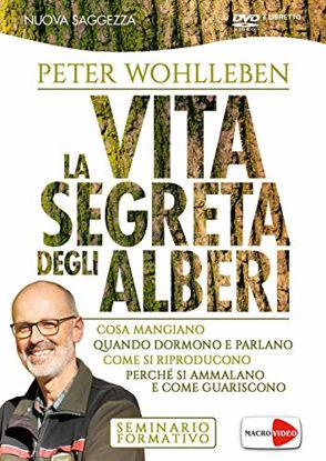 Immagine di VITA SEGRETA DEGLI ALBERI. DVD (LA)