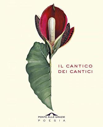 Immagine di CANTICO DEI CANTICI. TESTO EBRAICO A FRONTE (IL)