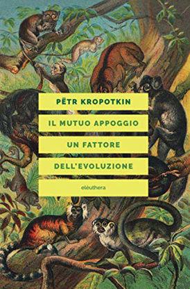 Immagine di MUTUO APPOGGIO. UN FATTORE DELL`EVOLUZIONE (IL)