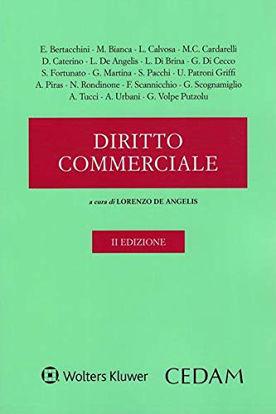 Immagine di DIRITTO COMMERCIALE