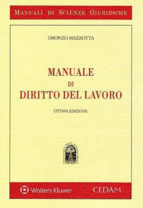 Immagine di MANUALE DI DIRITTO DEL LAVORO