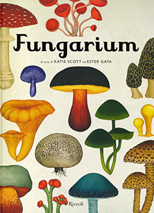Immagine di FUNGARIUM
