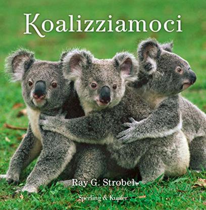 Immagine di KOALIZZIAMOCI