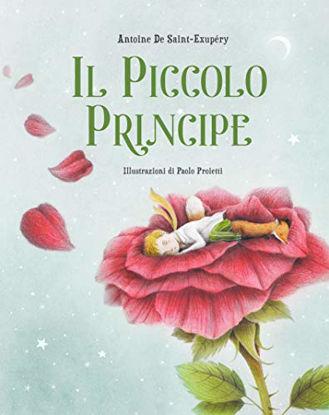Immagine di IL PICCOLO PRINCIPE