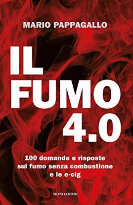 Immagine di FUMO 4.0 (IL)