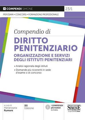 Immagine di COMPENDIO DI DIRITTO PENITENZIARIO. ORGANIZZAZIONE E SERVIZI DEGLI ISTITUTI PENITENZIARI