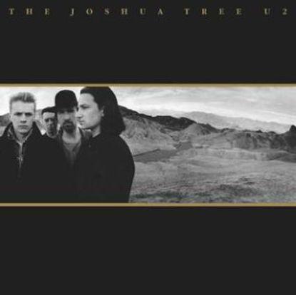 Immagine di THE JOSHUA TREE -30TH ANNIVERSARY (2 LP) - U2