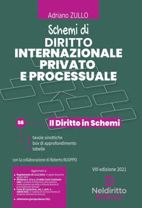 Immagine di SCHEMI DI DIRITTO INTERNAZIONALE PRIVATO E PROCESSUALE 2021
