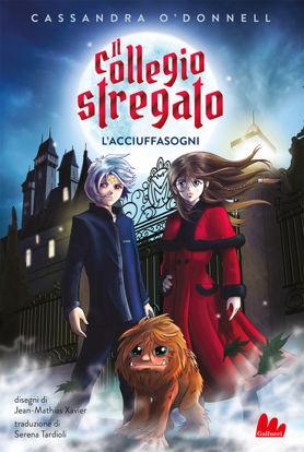 Immagine di ACCIUFFASOGNI. IL COLLEGIO STREGATO (L`)