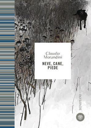 Immagine di NEVE, CANE, PIEDE
