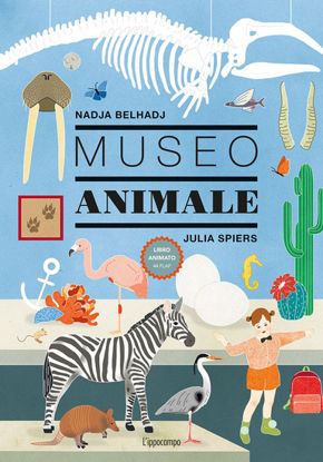 Immagine di MUSEO ANIMALE
